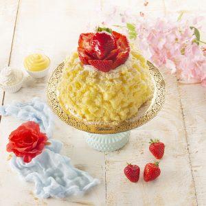 Torta Mimosa Chantilly e Fragole